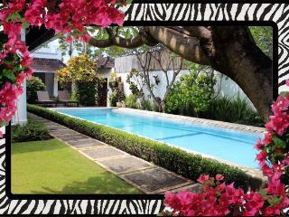 Villa Safari -Spacious Open Plan 3bd/bth A/C WIFI pool Seminyak - walk to all