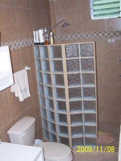 Bathroom  -  remodeled with walk in shower with lots of hot water.