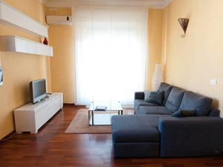 Great apartment in central Rome - AC, WIFI, SKY TV