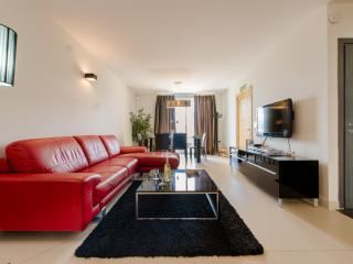 Bright, Luxurious & fully-equipped apartment