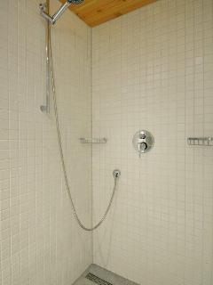 the shower in the bathroom