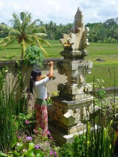 Wayan doing daily offerings at our villa temple