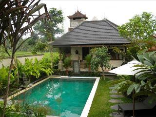 Satori Villas Bali - luxury villas 10m Stroll to Ubud