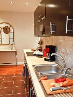 LE TRIOMPHE ELYSEES: Kitchen With Dishwasher, Over, Stove, Coffee Maker, Kettle, Spices & More !