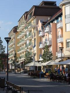 pedestrian precinct with cafe'