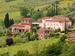 Colleverde Vineyards, 6 bedrooms villa in Tuscany, Lucca