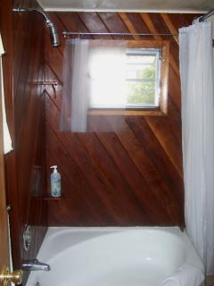 Cedar-lined Shower/Tub