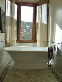 Master Bath separate tub
