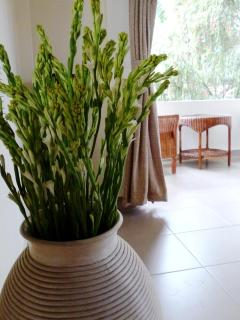 gorgeous tropical flowers throughout the villa