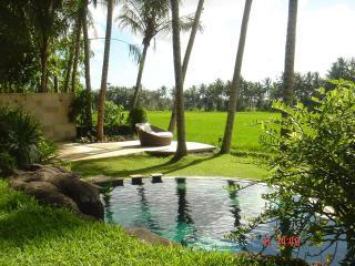 ubud, private villa with amazing ricefield view, Ubud