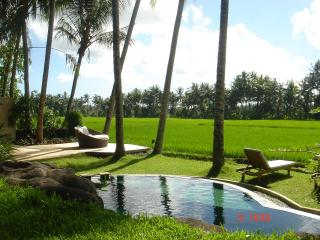 ubud, private villa with amazing ricefield view