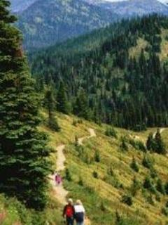 Hike the Danny On Trail on Whitefish Mountain, Ride the chair lift, Mountain Bike, Walk in the Treetops, Alpine Slide...