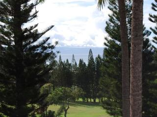 Kapalua Golf Villas G14V3