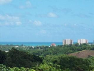 Affordable Fusion of Beaches and Mountains, Luquillo