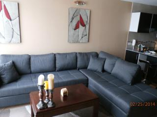 Modern Spacious Luxurious Apt, 6 blks to El Centro