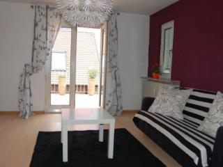 Vacation Apartment in Neustadt an der Weinstrasse - 700 sqft, modern, comfortable, central (# 3285)