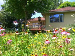 Amazing wildflowers surround Vista