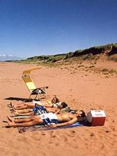 Sunbathing on sandy, private beach-Privacy Plus!