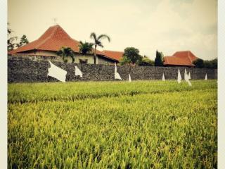 Villa AQUIN - Solo City