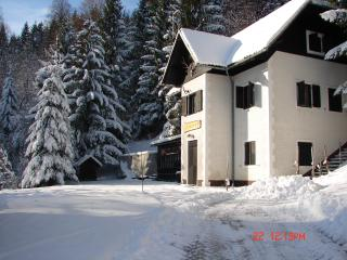 Chalet in Slovenia, Ski &Spa domestic food, wine