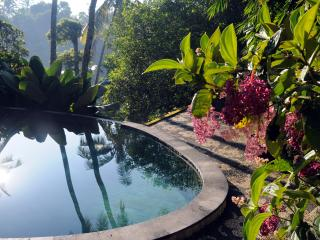 Luxurious, rice-field valley view villa,Ubud,4BR