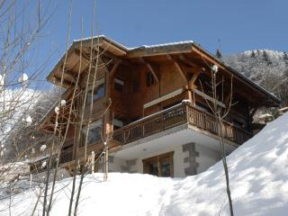 Charming Chalet Apartment French Alps Ski Resort, Bonnevaux