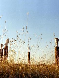 Sculpture garden, Countryhouse Villa La Rogaia Umbria, Lake Trasimeno