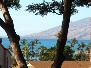 Maui Vista with PRIVATE loft! Sleep 5 adults!