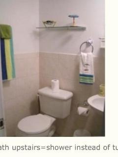 loft 3/4  bathroom, no tub/shower instead