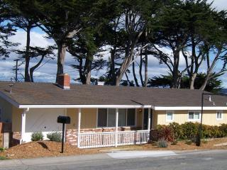 A street away from Beach and short walk to Golf; License #0098, Pacific Grove