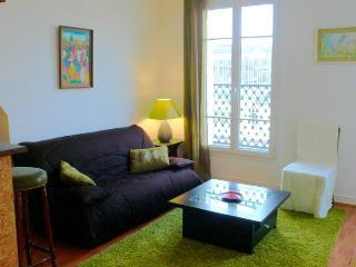 474 One bedroom Terrasse  Paris Montparnasse district