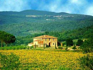 Tuscany Estate - Villa Grand Duc Italian Villa near the Chianti, Tuscany