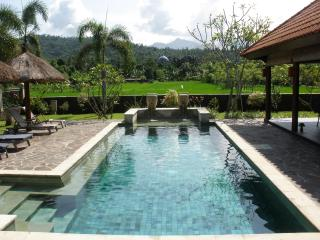 Villa Bale Solah:3 bedrooms/bathrooms,private pool, Batu Layar