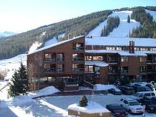 Fox Pine Lodge ~ RA4988, Copper Mountain
