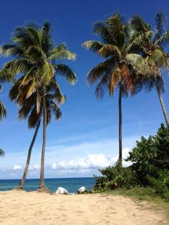 La Chata Beach within walking distance