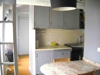 Sixth Delight Apartment in 6th arrondissement Paris, rental apartment in Paris c