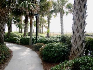 Winding Path To Beach