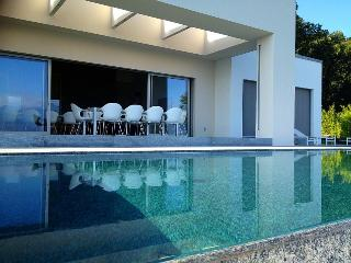Modern designer villa with pool and great lakeview!