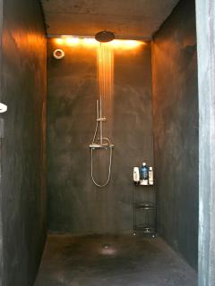 Shower in pool house
