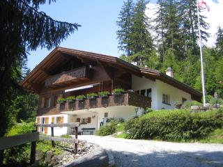 Chalet Ave, 2 flats (sleeps 9 and 4 persons), Grindelwald