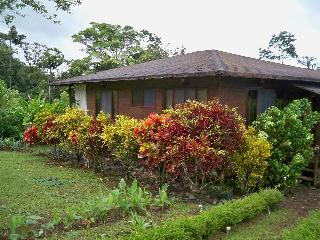 La Fortuna Arenal, 2 dormitorio alquiler casa, La Fortuna de San Carlos