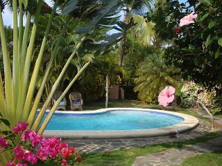 Charming Villa Carribean 50 yards from a Beach, Las Terrenas
