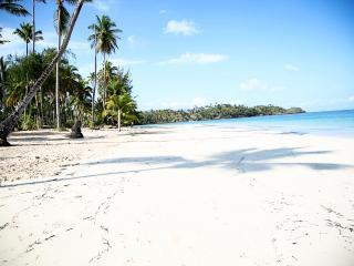 Beach 50 yards at Villa Hibiscus