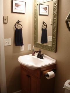 Modern rustic guest bathroom