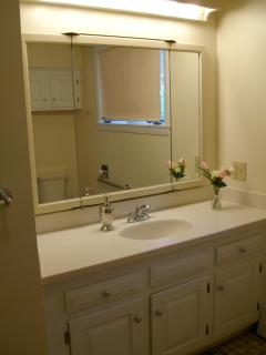 View of Yellow Bathroom