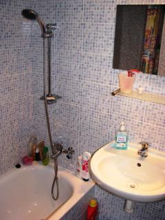 Bathroom with a shower, sink and toilet