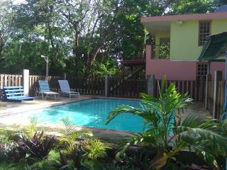 Del Mar Eco-Lodging Apartments:  Manatee, Luquillo