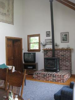 Soapstone stove on brick hearth