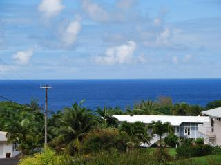Beautiful Ocean Views from the covered lanai