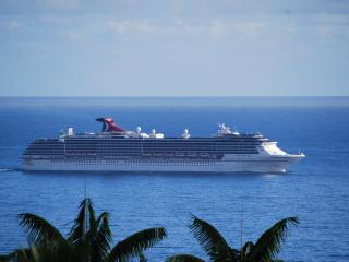 Watch the cruise ships morning and night